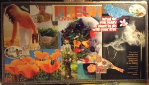 fresh life vision